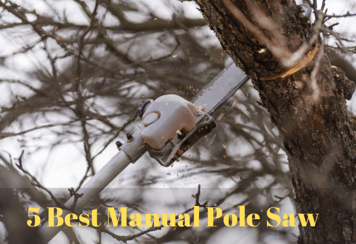 Top 10 Best Manual Pole Saw